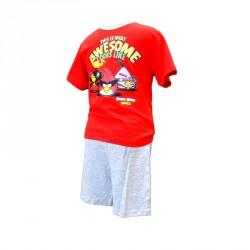Pyžamo / tričko a kraťasy Angry Birds Červené / vecizfilmu