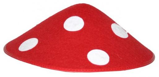 Klobouk hříbek muchomůrka červená