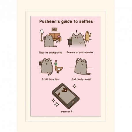Obrázek Pusheen / Guide to Selfies / vecizfilmu