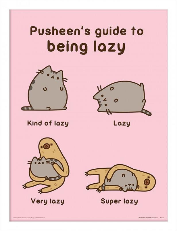 Tištěný obraz v rámečku Pusheen / Guide to Being Lazy 30 x 40 cm