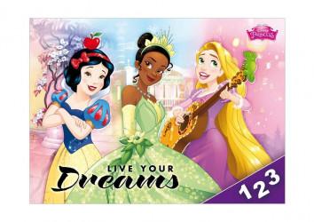 Desky na číslice / Princess / 18 x 25 cm / veci z filmu