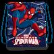 Chlapecký Gym Bag / Taška Na Přezůvky Spiderman 40 x 32 cm / vecizfilmu