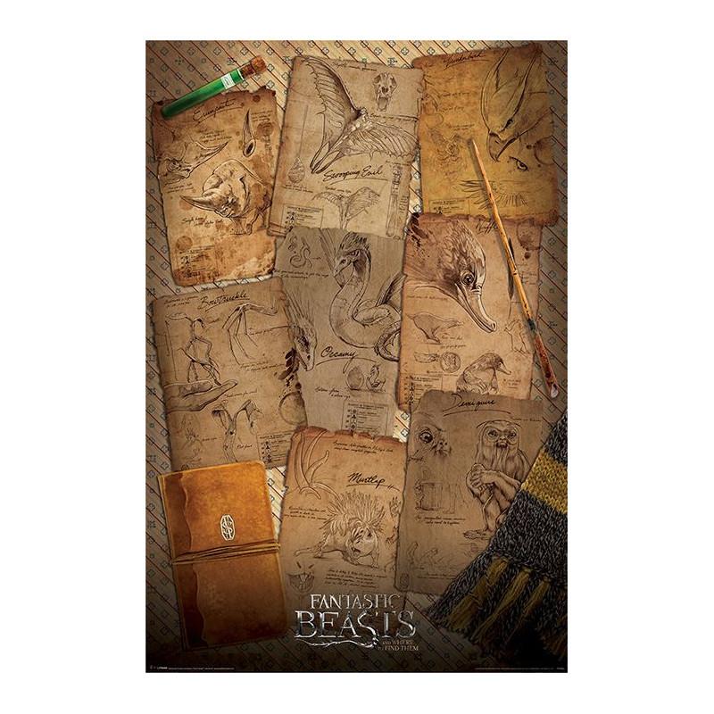 Plakát na stěnu Fantastická zvířata / Fantastic Beasts / Notebook Pages 61 x 91,5 cm