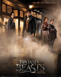 Plakát na stěnu Fantastická zvířata / Fantastic Beast / Magical Group 40 x 50 cm / vecizfilmu