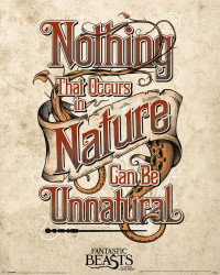 Plakát na stěnu Fantastická zvířata / Fantastic Beast / Unnatural 40 x 50 cm / vecizfilmu