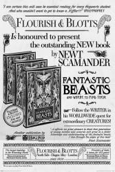 Plakát na stěnu Fantastická zvířata / Fantastic Beasts / Flourish and Blotts 61 x 91,5 cm / vecizfilmu