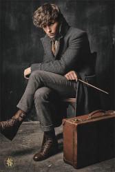 Plakát na stěnu Fantastická zvířata / Fantastic Beasts / The Crimes Of Grindelwald 61 x 91,5 cm / vecizfilmu