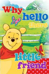 Malý dětský ručník Medvídek Pú / Motýlci / Winnie The Pooh / 60 x 40 cm / vecizfilmu
