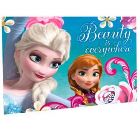 Ručník na ruce Frozen / Elsa a Anna / vecizfilmu