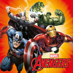 Polštář Avengers  / All Heroes / vecizfilmu