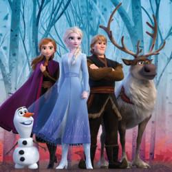 Povlak na polštář Frozen II / vecizfilmu