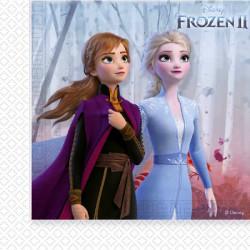 Ubrousky Frozen 2 / vecizfilmu