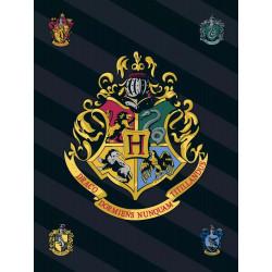 Fleecová Deka Harry Potter / Koleje