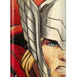 Kryt na mobil Avengers Samsung Edge S6